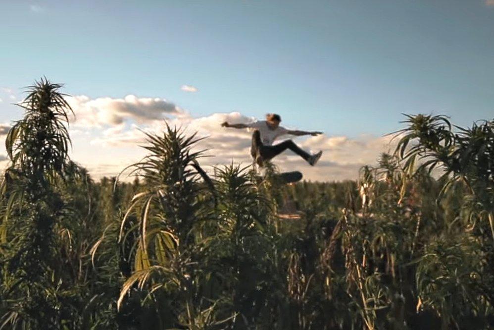 Joyeux 420 – Skateboard & Weed?!
