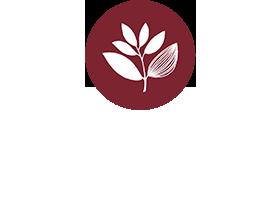 Magenta Logo