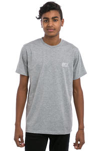Antix Suture T-Shirt (heather grey)