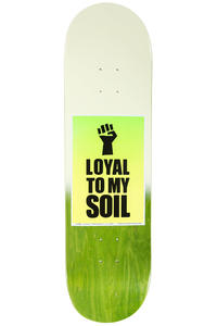 """Chocolate Tershy Signs Of The Times 8.5"""" Deck (multi)"""