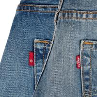 Levi's Skate 504 Regular Straight Jeans (rigid indigo)