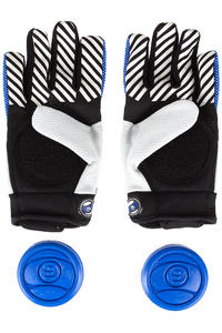 Sector 9 Apex Protection Main (blue)