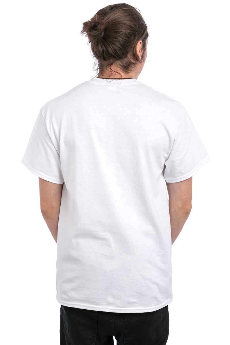 Thrasher Two-Tone Skategoat T-Shirt (white)