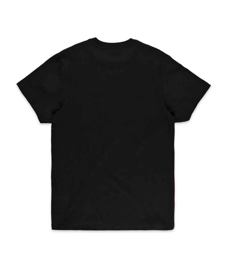 Vans Skate T-Shirt (black)