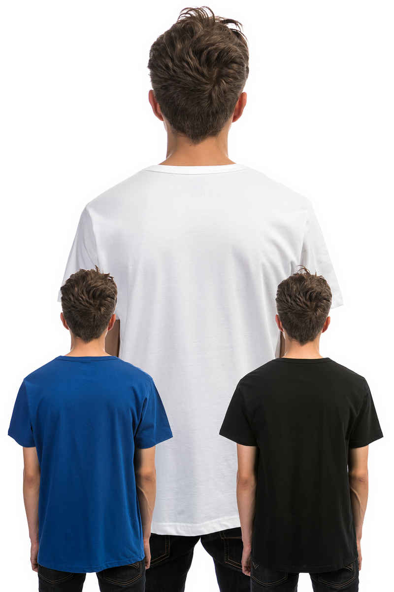 Dickies Uniontown T-Shirt (assorted colors) 3 Pack