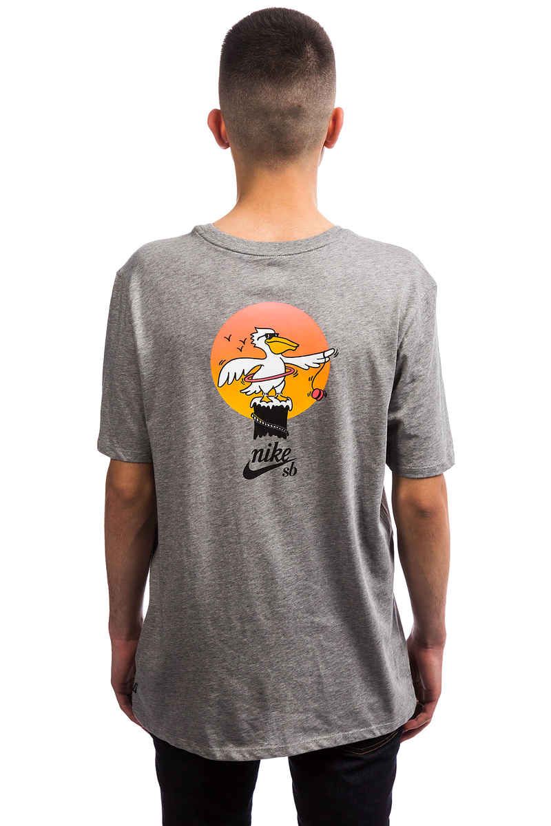 Nike SB Pelican T-Shirt (dark grey heather multi)