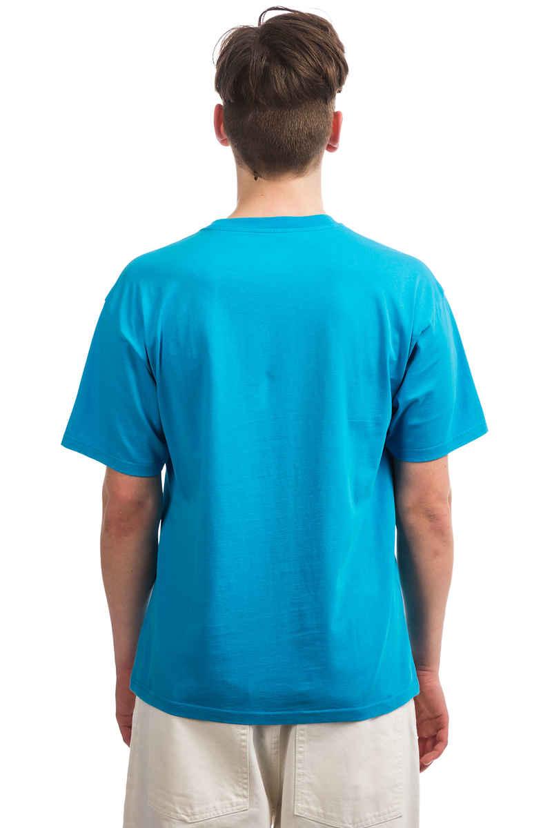 Polar Skateboards Paul T-Shirt (turquoise)