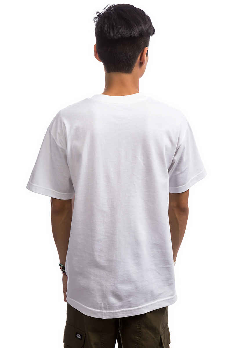 Grizzly Psychedelic Pocket T-Shirt (white)