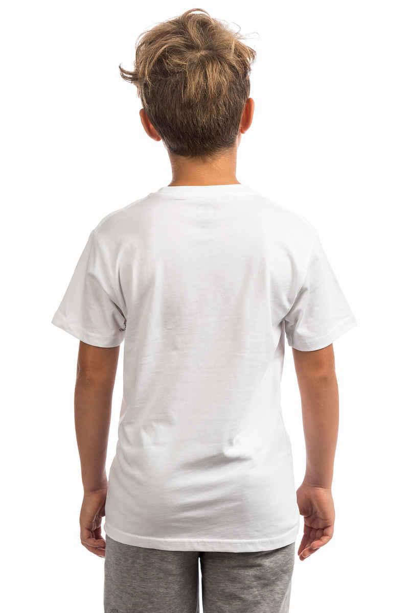 Volcom Crisp Stone T-Shirt kids (white)