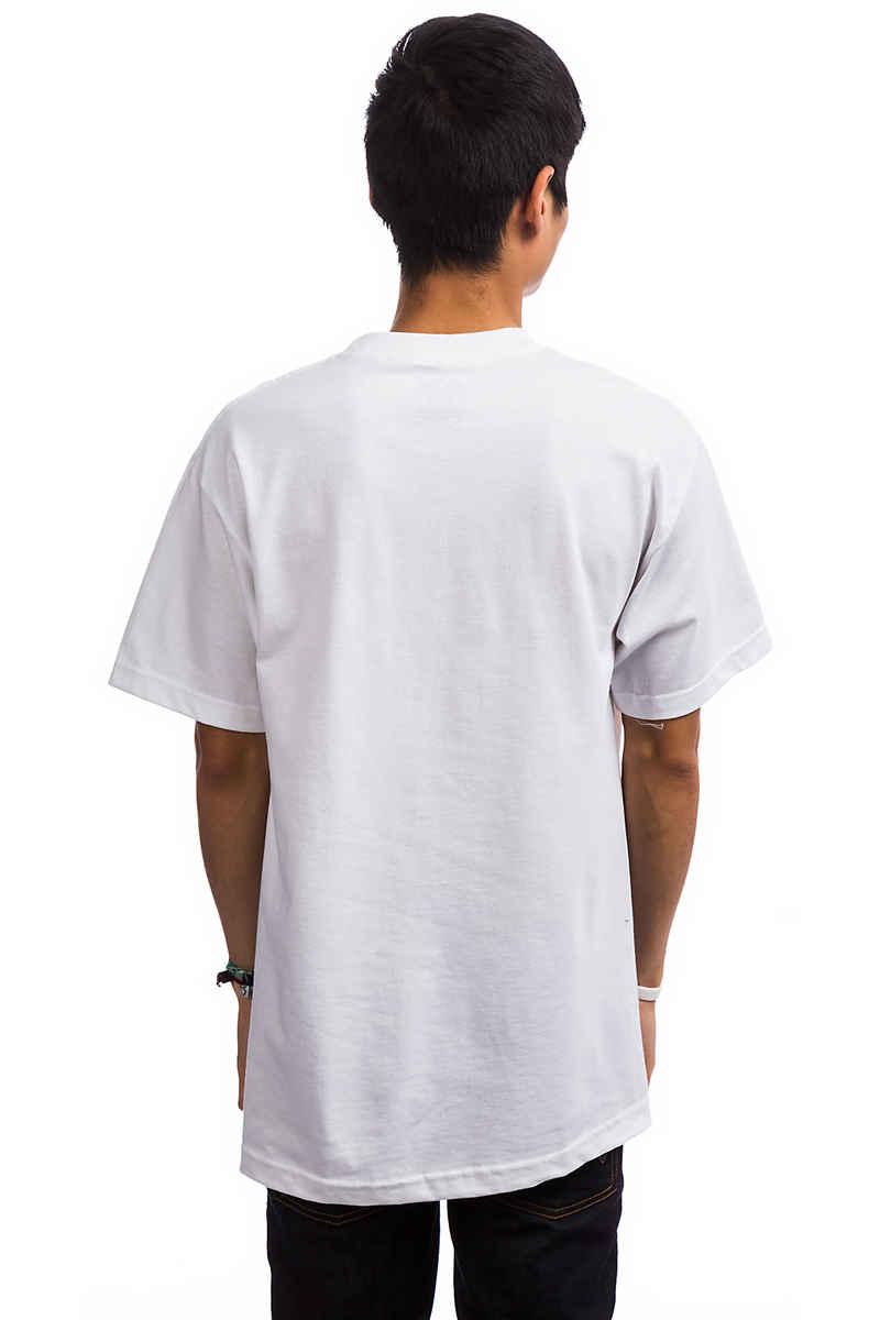 DGK Skateboards All Star T-Shirt (white)