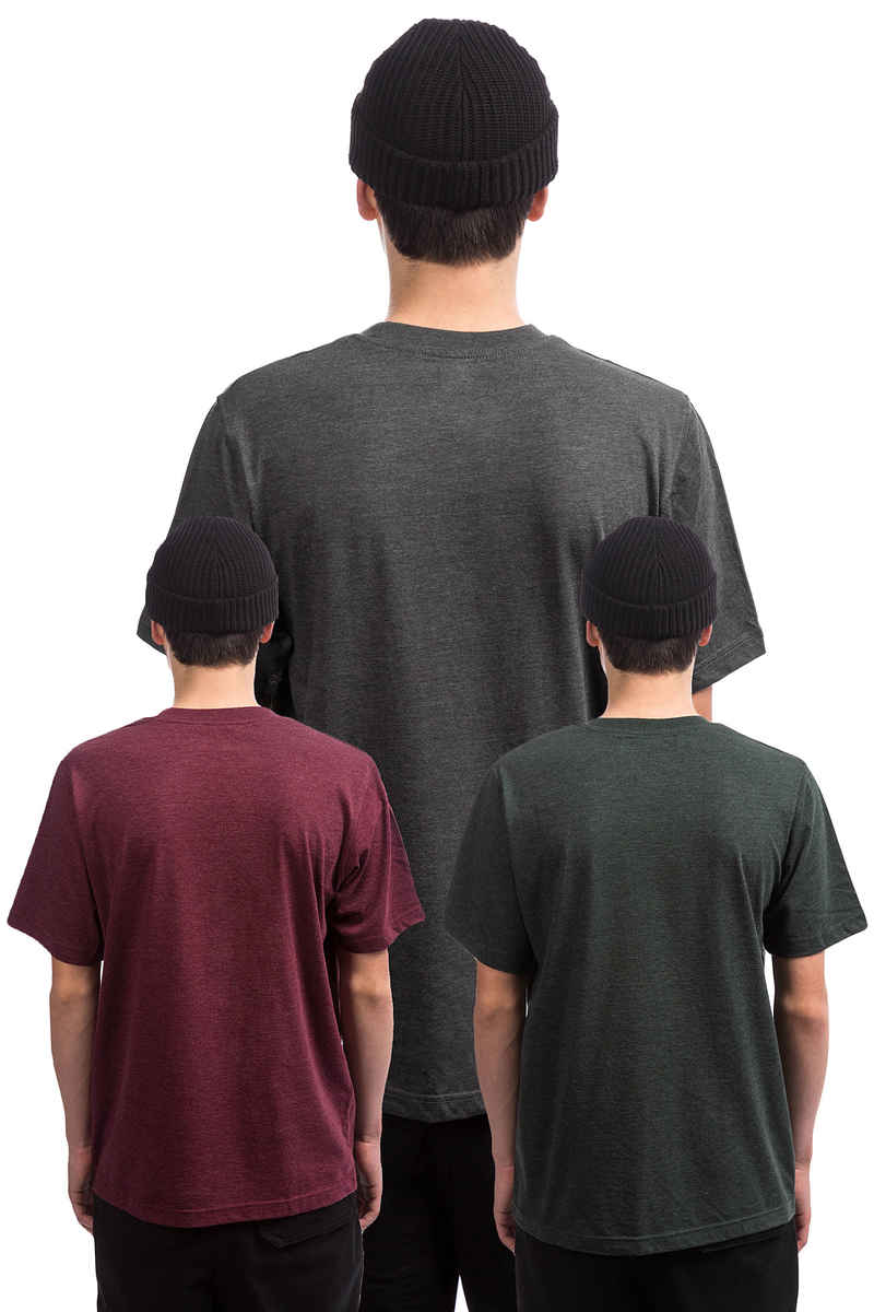 Dickies Hastings T-Shirt (assorted colour) 3 Pack