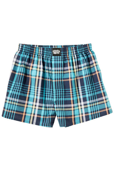 Lousy Livin Underwear Check Boxers (teal)