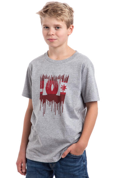 DC Melting T-Shirt kids (heather grey)