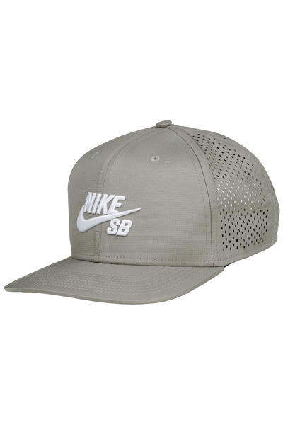 Nike SB Performance Trucker Cap (dust)