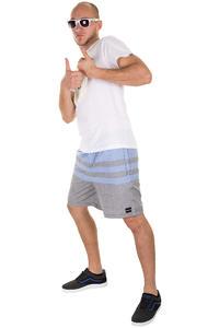 Hurley Chambles Shorts (multi 1)