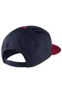Nike SB Performance Trucker Cap Fit To Move  (gym red black df)
