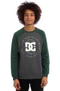 DC Rebuilt Raglan Sweatshirt (pinecone)