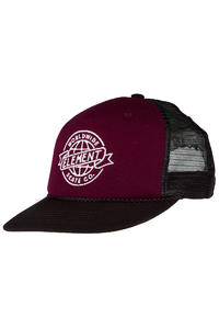 Element Skate-Co Trucker Cap (brown purple)