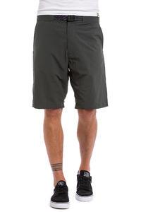 Nike SB Everett Woven Shorts (anthracite)